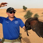 Drones Used in Training and Understanding Falcons